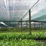 Lưới che nắng giá rẻ ngoài trời tại TP.HCM