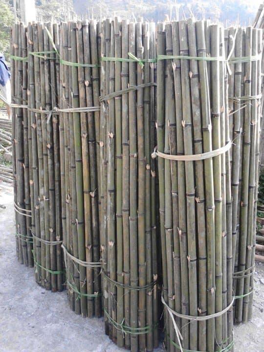Nguyên liệu tre trúc dùng để ốp trần tre (chưa xử lý)